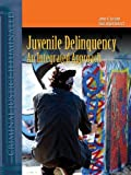 Juvenile Delinquency: An Integrated Approach (Criminal Justice Illuminated) by James Burfeind (2005-11-09)