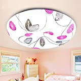 HAIHAHA Led-Schlafzimmer Decke Licht und warme Beleuchtung kreative Deckenleuchte runde Brot LED Deckenleuchte Acryl wuji, 400 mm