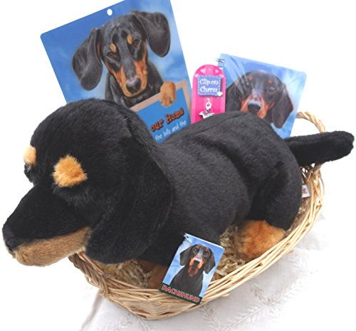 Paradise Pets DACHSHUND CHRISTMAS BIRTHDAY GIFT WRAPPED BASKET HAMPER WITH DAXIE COLLECTIBLES & SOFT TOY DOG
