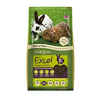 Burgess Excel Nuggets with Mint Adult Rabbit Food, 10 kg 13
