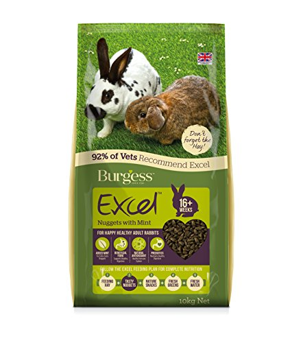 Excel Burgess Nuggets with Mint Adult Rabbit Food 10 kg
