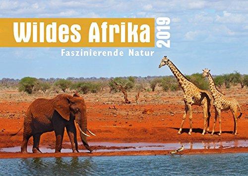 Wildes Afrika 2019: Faszinierende Natur
