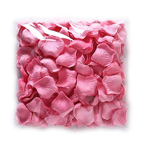 Zelro 2000 Stück große Seiden-Rosenblätter für Hochzeit, Party, Valentinstag, Gastgeschenke, Dekoration und Vase - Rose (Vase Blush)