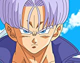 Infinite Arts Dragon Ball Super Trunks (18x14 inch / 44x35 cm) Silk Print Poster Seide Plakat - Silk Printing - 7B3625