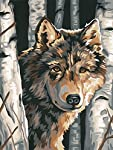 Dimensions Paintworks Learn to Paint Wolf Among Birches Kit