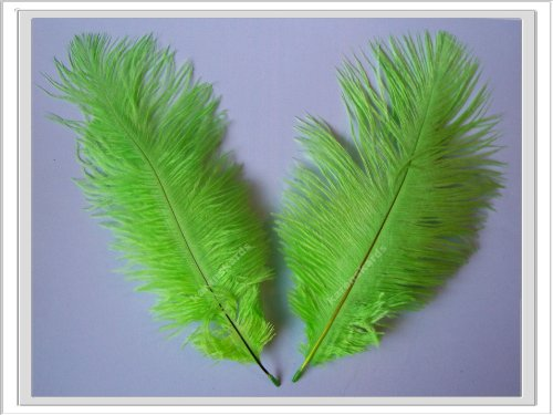 pack-of-2-lime-green-ostrich-feathers-approx-8-inches-decorcrafts-etc