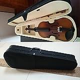 Student Akustische Violine 1/2Ahorn Fichte mit Fall Bogen Kolophonium klassischen Farbe