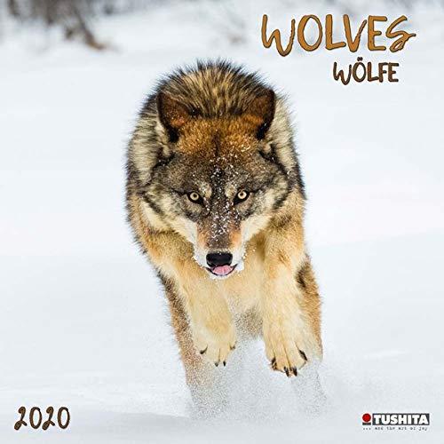 Wolves 2020: Kalender 2020 (Wonderful World)