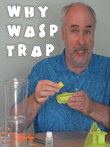 why-wasp-trap-review-epic-review-guys