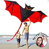 Cometas para niños Adultos, cometas Kite Batman grande para The Beach Park Al aire libre Easy Fly 3D Animal Bat Dragon Rainbow Kite colorido Fácil de montar Mejor calidad Satisfacción 100% Ideal para la diversión familiar