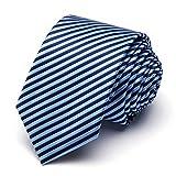 XIANGUO - Cravatepourhommecouleurvariécravate pittoresque - One Size - Bleu01