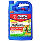 Best Lawn Weed Killers - Bayer Advanced 704130 All-in-One Lawn Weed and Crabgrass Review
