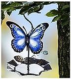 dpr. Vogel Futterstation Vogeltränke zum Hängen aus Metall mit Schmetterling Futterspender Wassertränke