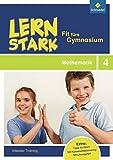 LERNSTARK - Fit fürs Gymnasium: Mathematik 4