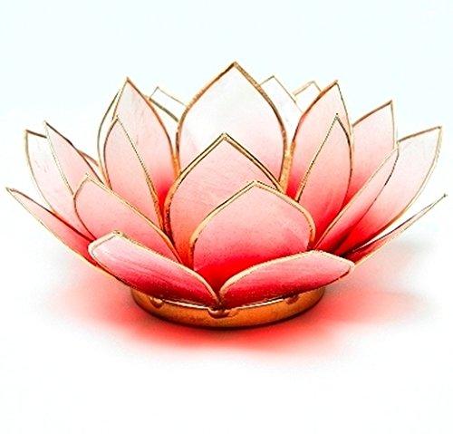 Porte Bougie Lotus en Nacre de Capiz aux Thé Rouge clair doré quelque chose de différent