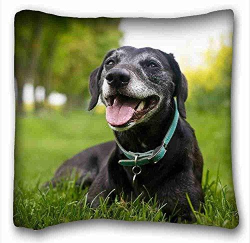 oreiller-doux-coque-animaux-beagle-chiots-chien-cloture-diy-taie-doreiller-taille-406-x-406-cm-convi