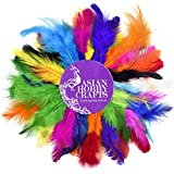 #6: Asian Hobby Crafts Natural Dyed Feathers (50 Pieces)
