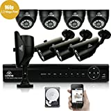 [All-in-One] KARE 8 Channel 1080N CCTV DVR Camera System with 4x Day Night Dome & 4x Bullet Cameras & 2000GB Hard Drive Disk (True 960p HD, 1280x960