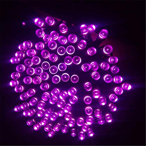 Amara Luci Stria Solare 12M 100 LD Catene Luminose 2 modalità Impermeabile per Esterno Giardino Casa Feste Halloween Matrimonio,Purple,50LED-7M