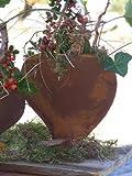 Herz zum bepflanzen, Edelrost, Rost Herz Metall