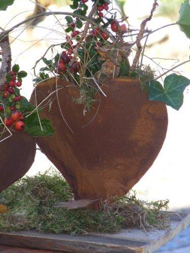 floristikvergleich.de Herz zum bepflanzen, Edelrost, Rost Herz Metall