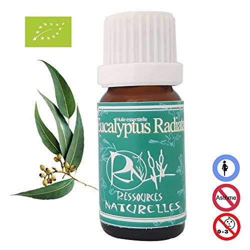 Aceite esencial ecológico eucalipto radiata 10ml