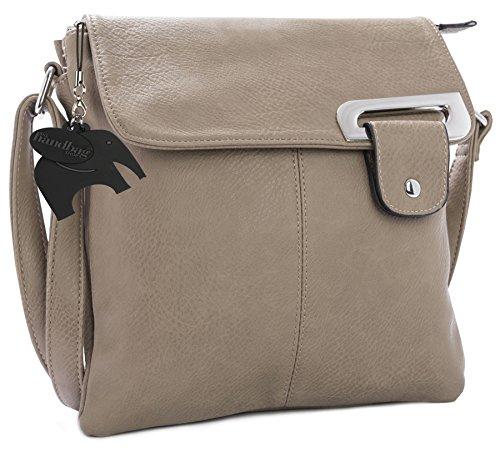 Big Handbag Shop Womens Medium Trendy Messenger Cross Body Shoulder Bag (Taupe)