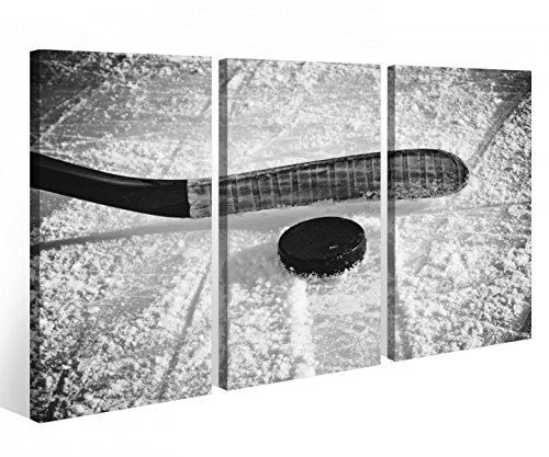 Leinwandbild 3 Tlg. Eishockey Scheibe Puck Sport Spiel Leinwand Bild Bilder Holz fertig gerahmt 9R744, 3 tlg BxH:120x80cm (3Stk 40x 80cm)