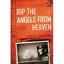 Rip the Angels from Heaven: A Novel