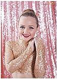 ShinyBeauty Hintergrund für Bilder, silberfarbene Pailletten, mit Ständer, silberfarben, Rose, 2FTx7FT
