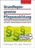 Grundlagengesetze Pflegeausbildung: Ausgabe 2018; Textausgabe für Ausbildung, Fortbildung, Studium; Mit Lexikon: 100 Rechtsbegriffe kompakt erläutert