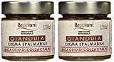 Crema Spalmabile alla Gianduia - Set 2 Barattoli da 250 gr, SENZA GLUTINE. Beppiani - Cioccolato Artigianale