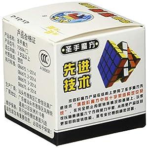 Puzzle Shengshou