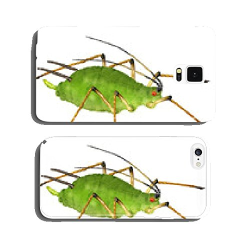 aphid-greenfly-plant-louse-cell-phone-cover-case-iphone5