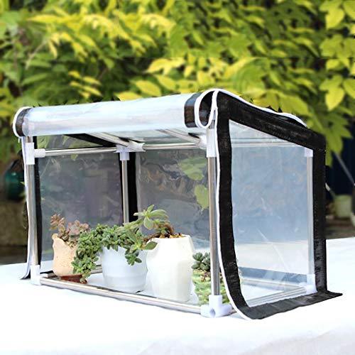 Zccws serra semplice piante grasse domestiche fiore serra cofano balcone fiori tenda antigelo cornice in acciaio casa fiore (dimensioni : 120 * 30 * 30cm)