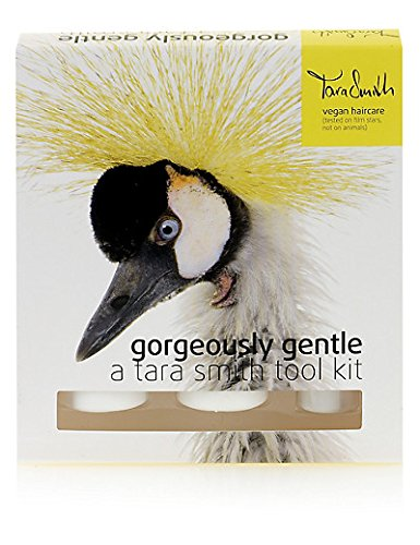 tara-smith-gorgeously-gentle-tool-kit