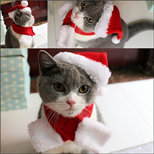 Imagen de bello luna conjunto de bufanda y sombrero de navidad para mascotas accesorios de disfraces de navidad para perros disfraz de mascota de la colección de navidad alternativa