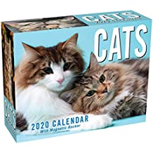 Cats 2020 Mini Day-to-Day Calendar