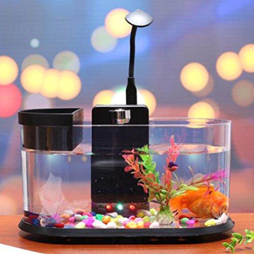 D@Qyy Desktop Aquarium Aquarien Acryl Kleine Landschaftsbau Ökologischen Zyklus, Kunststoff Kleine Aquarien,Black