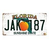 | WTF | | | Amerikanische Kennzeichen | Metall -Wandschild, Kunst, inspirierend, metall, Florida