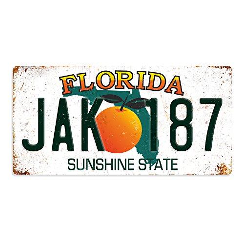   WTF   American Kennzeichen   Metall Wandschild Aufschrift Kunst, inspirierende, Florida