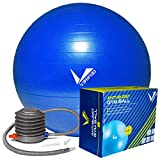 Verified Anti-Burst Weighted Gym Ball (65 cm to 85 cm) with Foot Pump