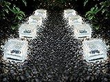8er Set XL kaltweiße Wegeleuchte LED Solarleuchte Eisblock LED Solarlampe Eiswürfel Solar LED Glas - Solarlampen mit LED Beleuchtung Echtglas mit integriertem Dämmerungssensor- einmaliger Blickfang als Wegeleuchte oder Pfadbeleuchtung als auch als Beleuchtung für das Blumenbeet (8er Set 10x10x5 cm kaltweiß)