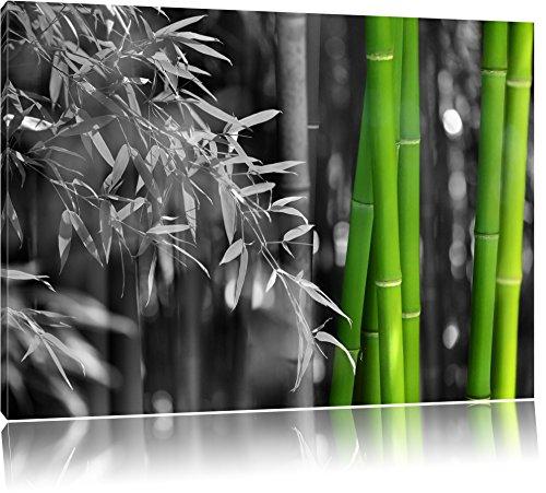 frischer Bambus schwarz/weiß Format: 120x80 auf Leinwand, XXL riesige Bilder fertig gerahmt mit Keilrahmen, Kunstdruck auf Wandbild mit Rahmen, günstiger als Gemälde oder Ölbild, kein Poster oder Plakat - Insel Bambus-rahmen