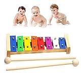 Xilofono strumento per bambini, Haichen giocattolo musicale per bambini, con chiavi di metallo multicolore e a prova di legno Mallets