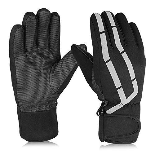 HiCool Skihandschuhe Warm Winddicht Wasserdicht Rutschfest Atmungsaktiv Handschuhe Erwachsene Winter (M, Schwarz)