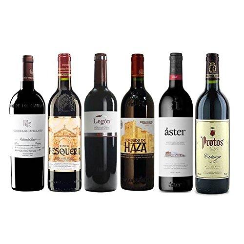 Pack Vino Ribera Del Duero Gourmet 6 Botellas, 1 Pago De Los Caplleanes Crianza, 1 Pesquera Crianza, 1 Condado De Haza Crianza, 1 Protos Crianza, 1 Legón Crianza, 1 Aster Crianza
