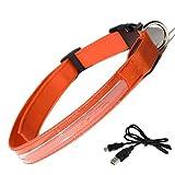 Hunde LED Leuchthalsband, Tping USB Aufladbar Hundehalsband Leuchtend Halsband Hunde Leuchtband Verstellbar Länge mit Verschiedenen Farben und Größen - Klein, Orange