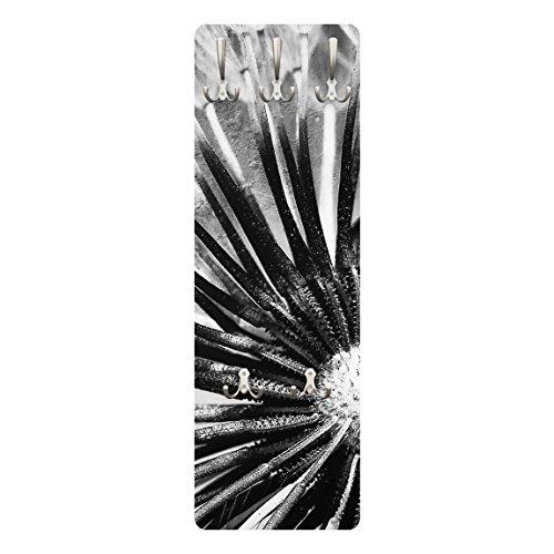 Apalis 79341 Wandgarderobe Pusteblume Schwarz und Weiß | Design Garderobe Garderobenpaneel Kleiderhaken Flurgarderobe Hakenleiste Holz Standgarderobe Hängegarderobe | 139x46cm