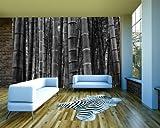 Vlies Fototapete - Bambuswald in Sichuan China - schwarz weiss - 100x65 cm - inklusive Kleister - Tapetenkleister – Bild auf Tapete – Bildtapete – Foto auf Tapeten – Wand – Wandtapete – Vliestapete – Wanddeko - Design